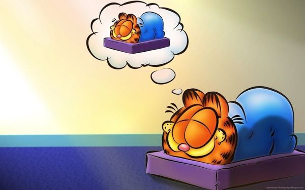 Garfield dreaming of garfield sleeping
