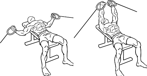 Flat-Bench-Cable-Fly2