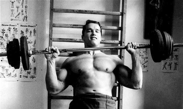 Schwarzenegger_2499862b