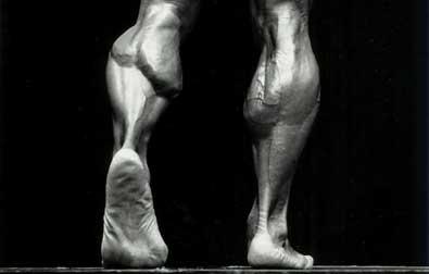 calves-feat