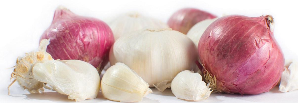 oinions-garlic